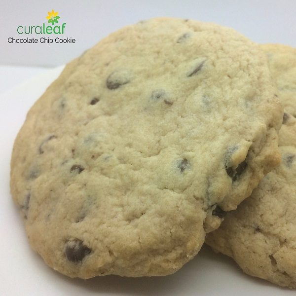 Chocolate Chip Cookie - 6374 (Hybrid, 0.39GE)
