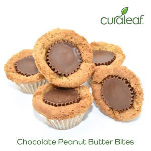Chocolate Peanut Butter Bites - 6531 (Hybrid, 5 x 19.2mg)